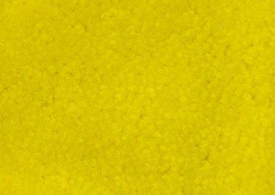 i10 Lemon