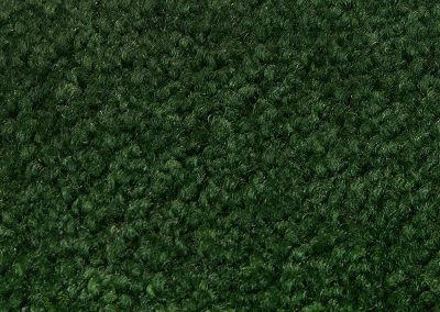 i210 Moss